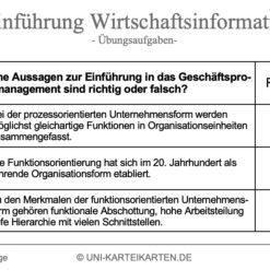 Einfuehrung Wirtschaftsinformatik FernUni Hagen Karteikarte 2.1