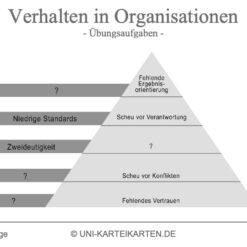 Verhalten in Organisationen FernUni Hagen Karteikarte 2.3